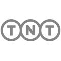 Brandall Agency TNT